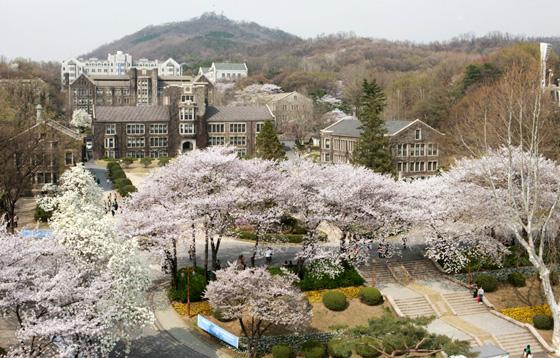 Du học Hàn Quốc cùng đại học Yonsei nổi tiếng