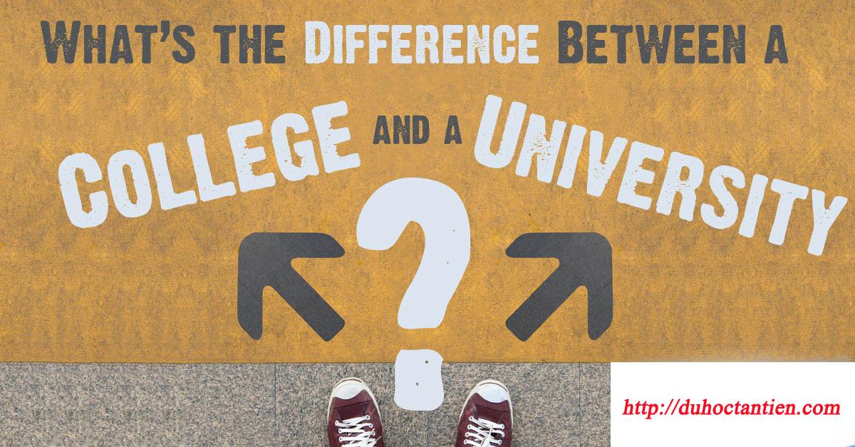 Phân biệt College và University khi du học mỹ