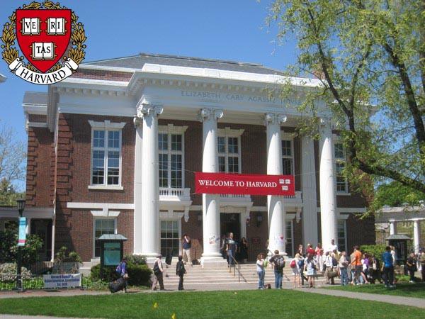 Top 20 trường đại học hàng đầu thế giới năm 2015